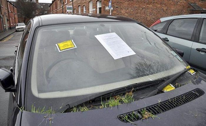 ditinggal-3-bulan-di-parkiran-mobil-bmw-ini-ditumbuhi-rumput